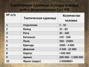 Количество бойцов вроте батальоне
